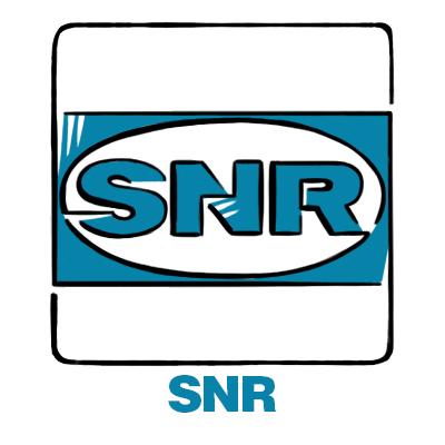 автозапчасти SNR